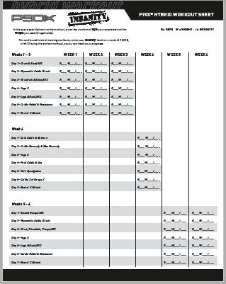 P90x Insanity Hybrid Schedule Books Worth Reading Maui Spa