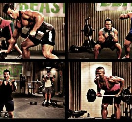 Body Beast Equipment