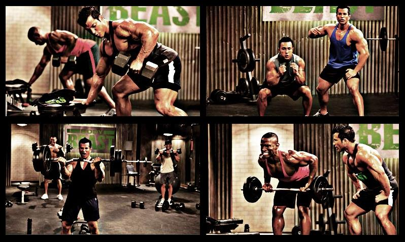 Body Beast Equipment -What You're Going To Need